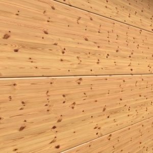 Scotch Pine Knot 1