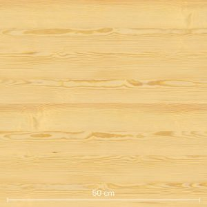 Scotch Pine 3